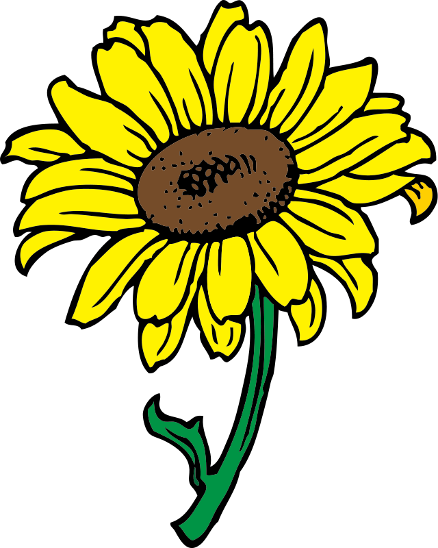 640x800 Bouquet Of Flower Outline Clip Art Free Sunflower Flower Clipart