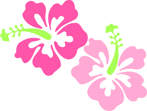 600x455 Buttercup Clipart Hawaiian Flower