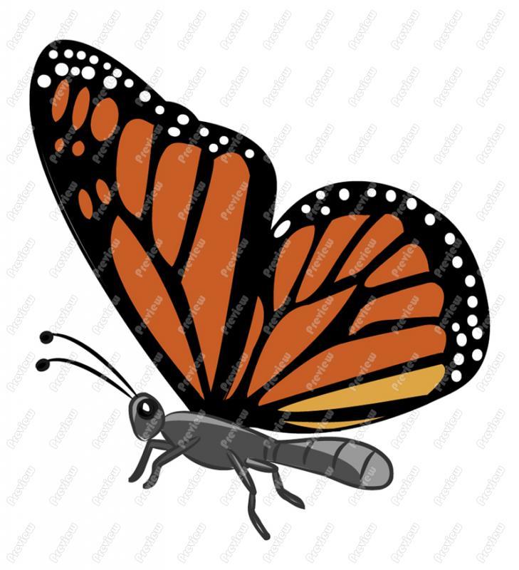 729x800 Monarch Butterfly Character Clip Art