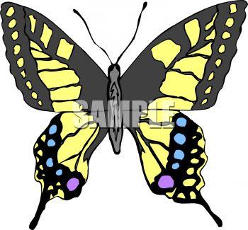 350x325 Swallowtail Butterfly Clipart