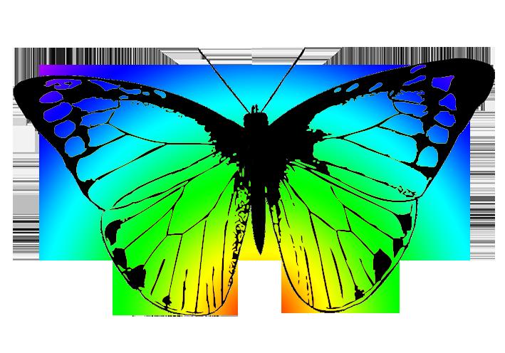 709x496 Green Butterfly Clip Art 7229523