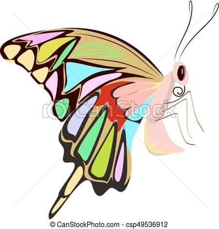 450x470 Isolated Beautiful Butterfly. Isolated Beautiful Butterfly