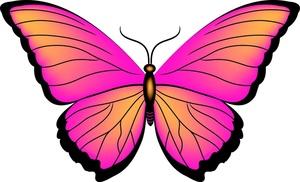 300x182 Butterfly Clip Art Pictures Butterflies Butterfly Clipart 3 2