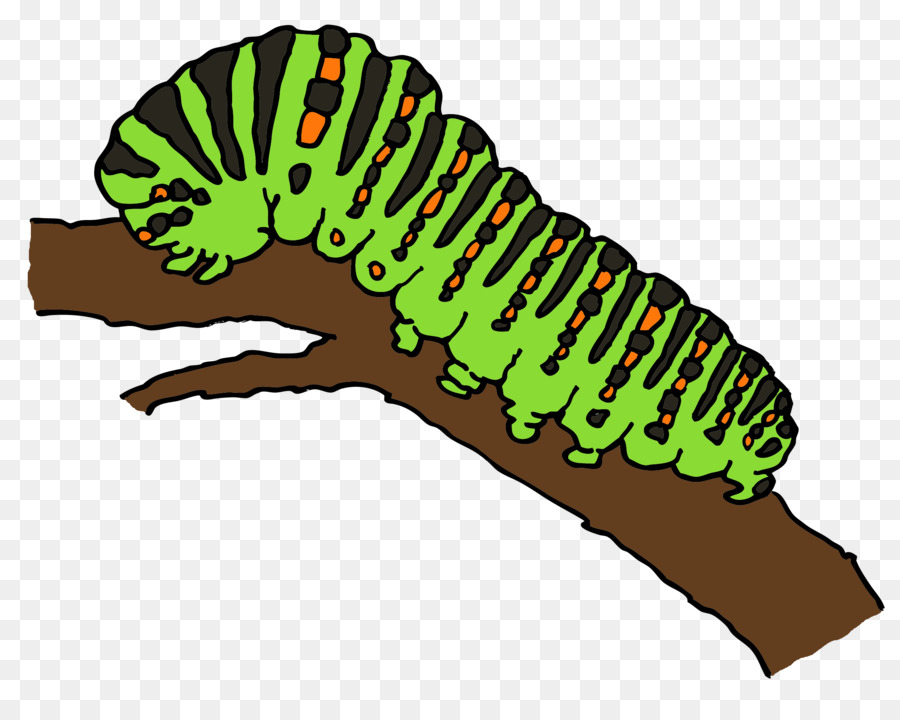 900x720 Worm Caterpillar Marshmallow Kisses Drawing Clip Art