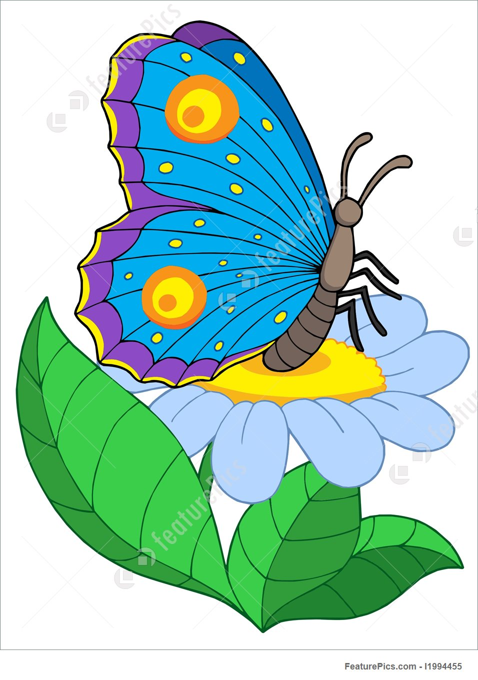 956x1360 Illustration Of Butterfly With Flower