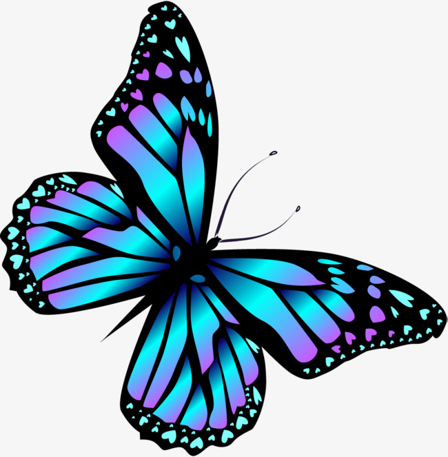 Butterfly Wings Clipart At GetDrawings.com | Free For ...