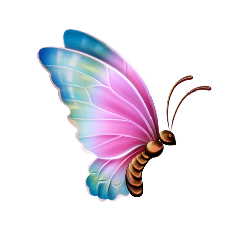 448x449 Half Butterfly Clipart Amp Half Butterfly Clip Art Images