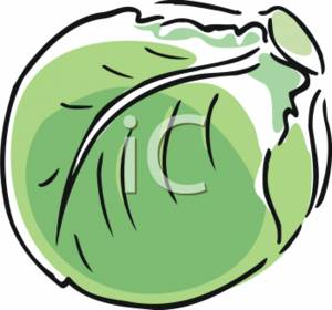 300x280 Cabbage 20clipart Clipart Panda