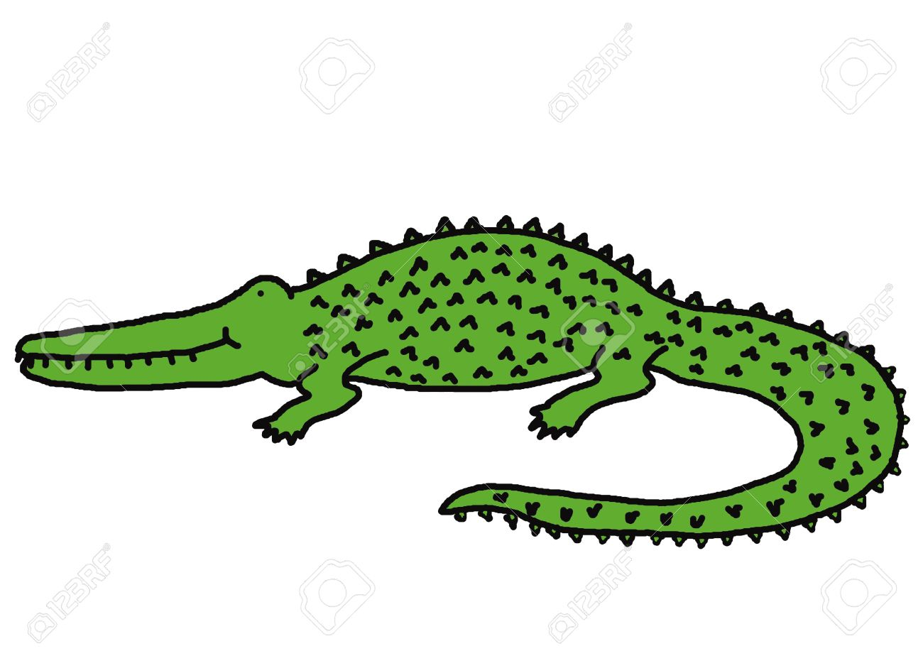 1300x917 Collection Of Crocodile Drawing Color High Quality, Free