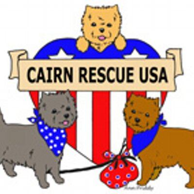 400x400 Cairn Rescue Usa (@cairnrescueusa) Twitter
