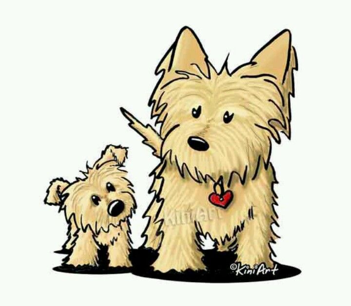 720x627 Kini Art Yorkies Cairn Terriers, Dog And Westies