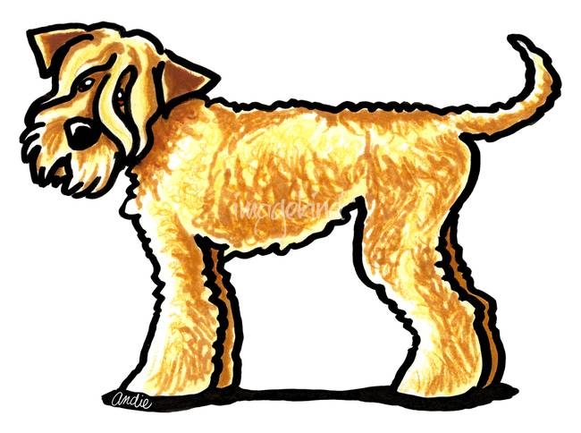 650x484 Stunning Wheaten Terrier Artwork For Sale On Fine Art Prints