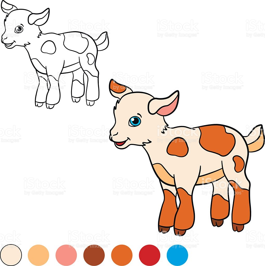 1017x1024 Goat Clipart Little