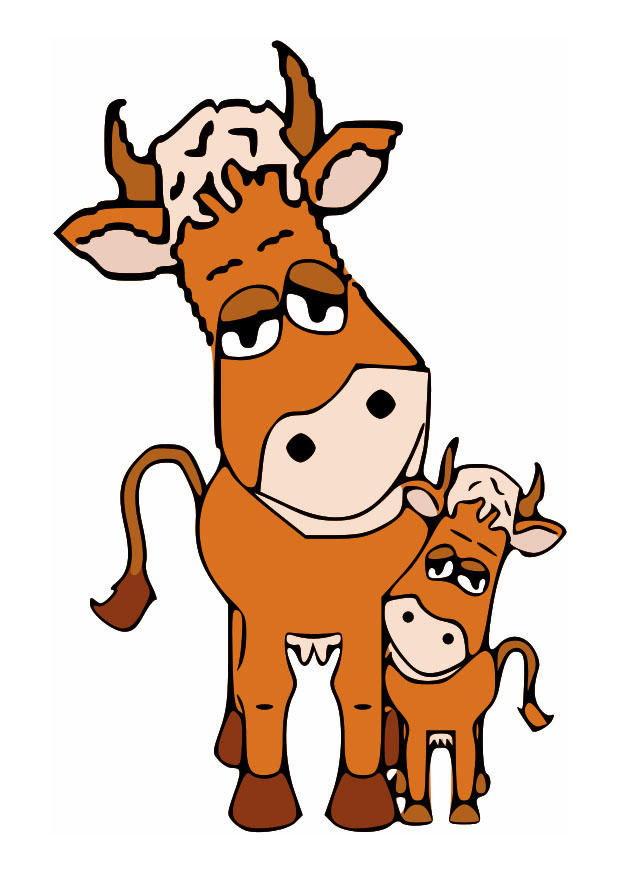 620x875 Image Mother Cow And Calf