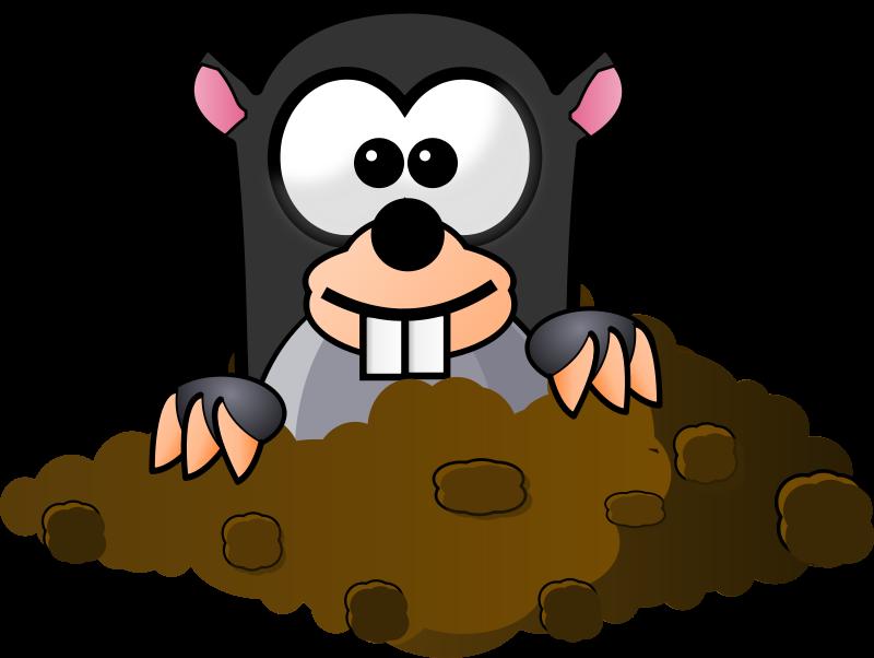 800x602 Top 93 Mole Clip Art
