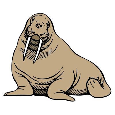 400x400 Walrus Clip Art