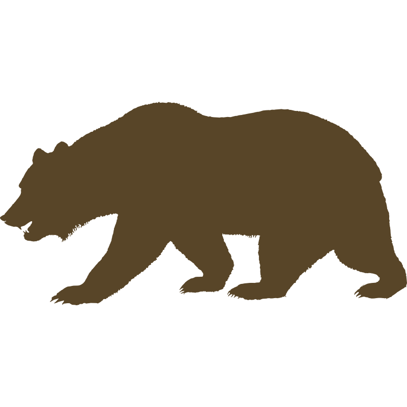 800x800 California Bear Outline Free Download Clip Art