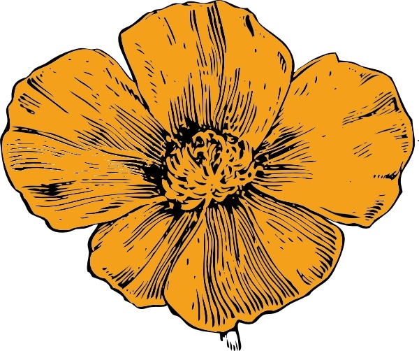 600x502 Collection Of California Poppy Clipart High Quality, Free