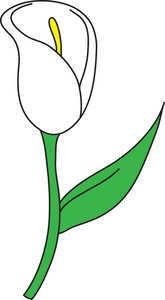 165x300 Collection Of Lily Flower Clipart High Quality, Free