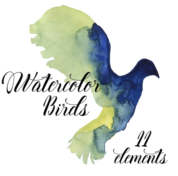 570x564 Birds Clip Art, Watercolor Hand Painted Birds, Painted Birds