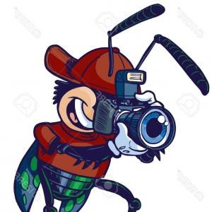 300x300 Old Camera Clipart Design Gm Arenawp