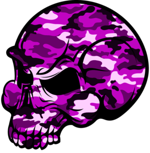294x300 Skull Pink Camouflage Free Images