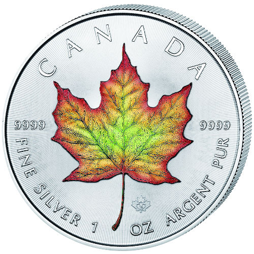 500x500 Images Of Canadian Maple Leaf Find Here