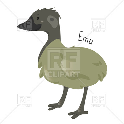 400x400 Emu Isolated On White Background Royalty Free Vector Clip Art