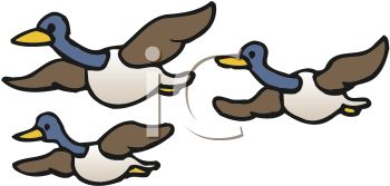 350x167 Flying Goose Formation Clipart