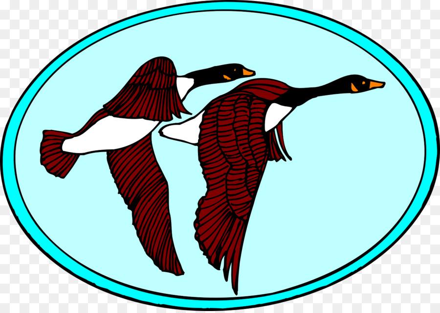 900x640 Goose Clip Art