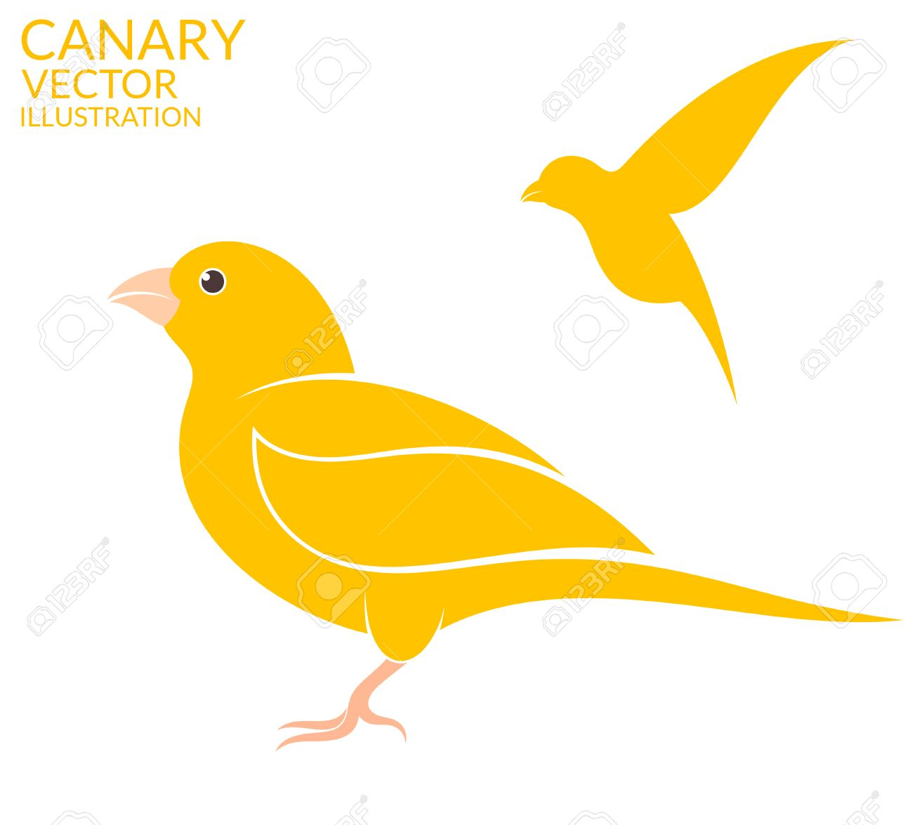 1300x1175 Canary Clipart Cartoon