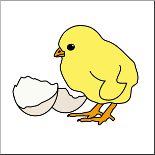 304x304 Clip Art Chick Amp Egg Color I Abcteach