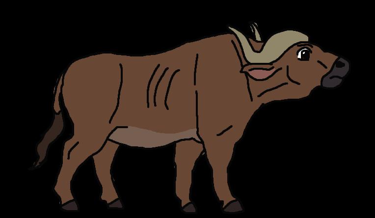 764x444 Cape Buffalo Character Drawing By Andrewshilohjeffery