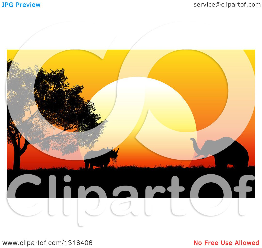 1080x1024 Clipart Of A Silhouetted Acacia Tree, Rhinoceros And Elephant