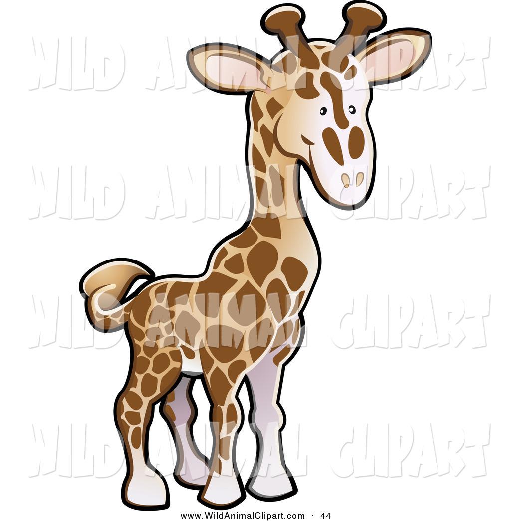 1024x1044 Royalty Free Cute Animal Stock Wildlife Designs
