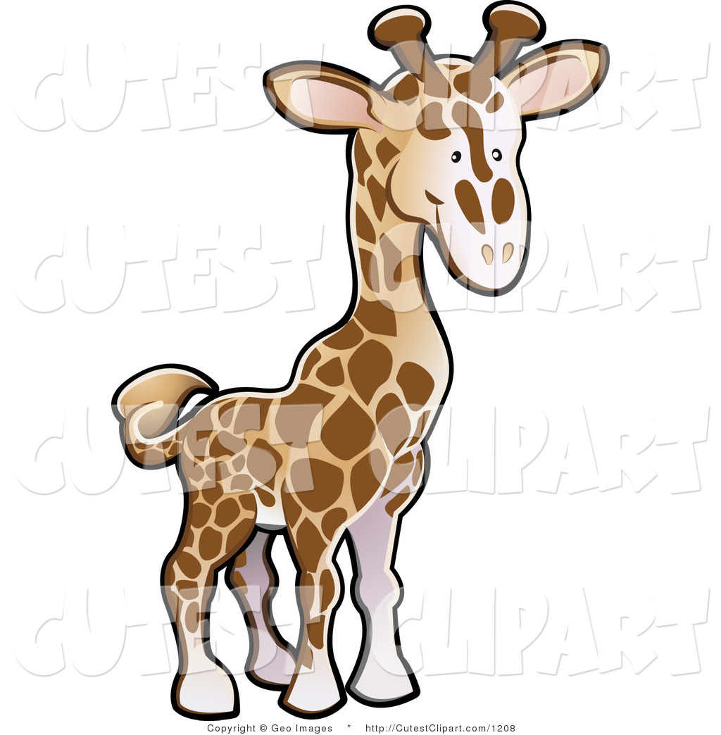 1024x1044 Royalty Free Stock Cute Designs Of Zoo Animals