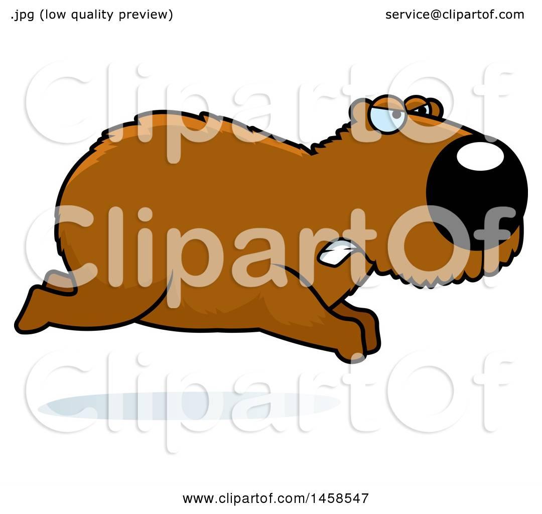 1080x1024 Clipart Of A Mad Capybara Running