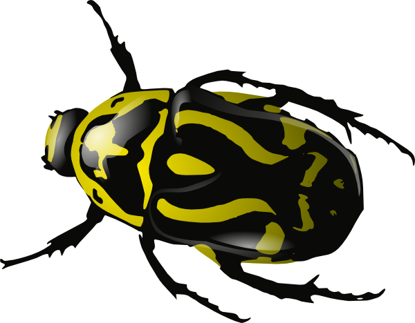 600x468 Insect 25 Vector Clip Art