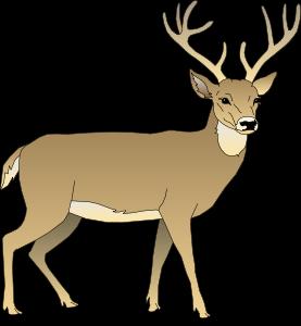 277x300 Animal Clip Art