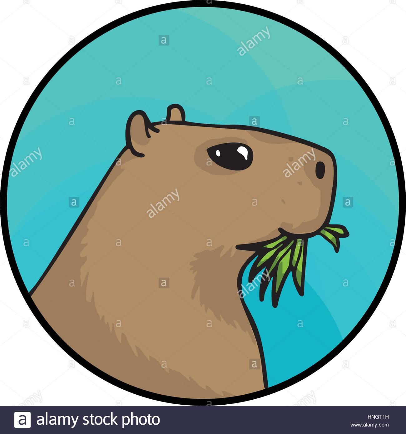 1300x1390 Capybara Stock Vector Images