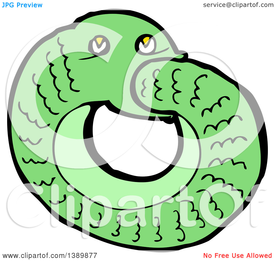 1080x1024 Auto Snake Clipart