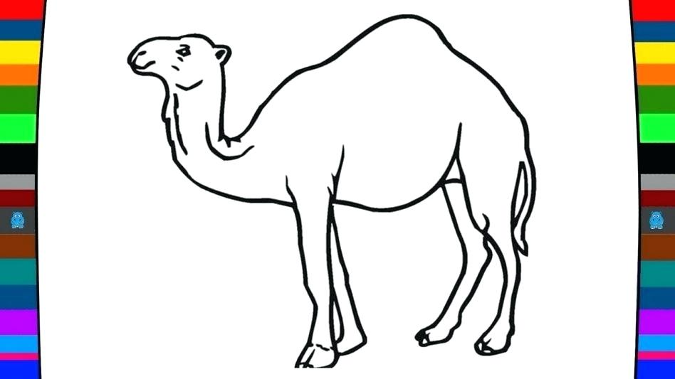 948x533 Free Camel Coloring Pages