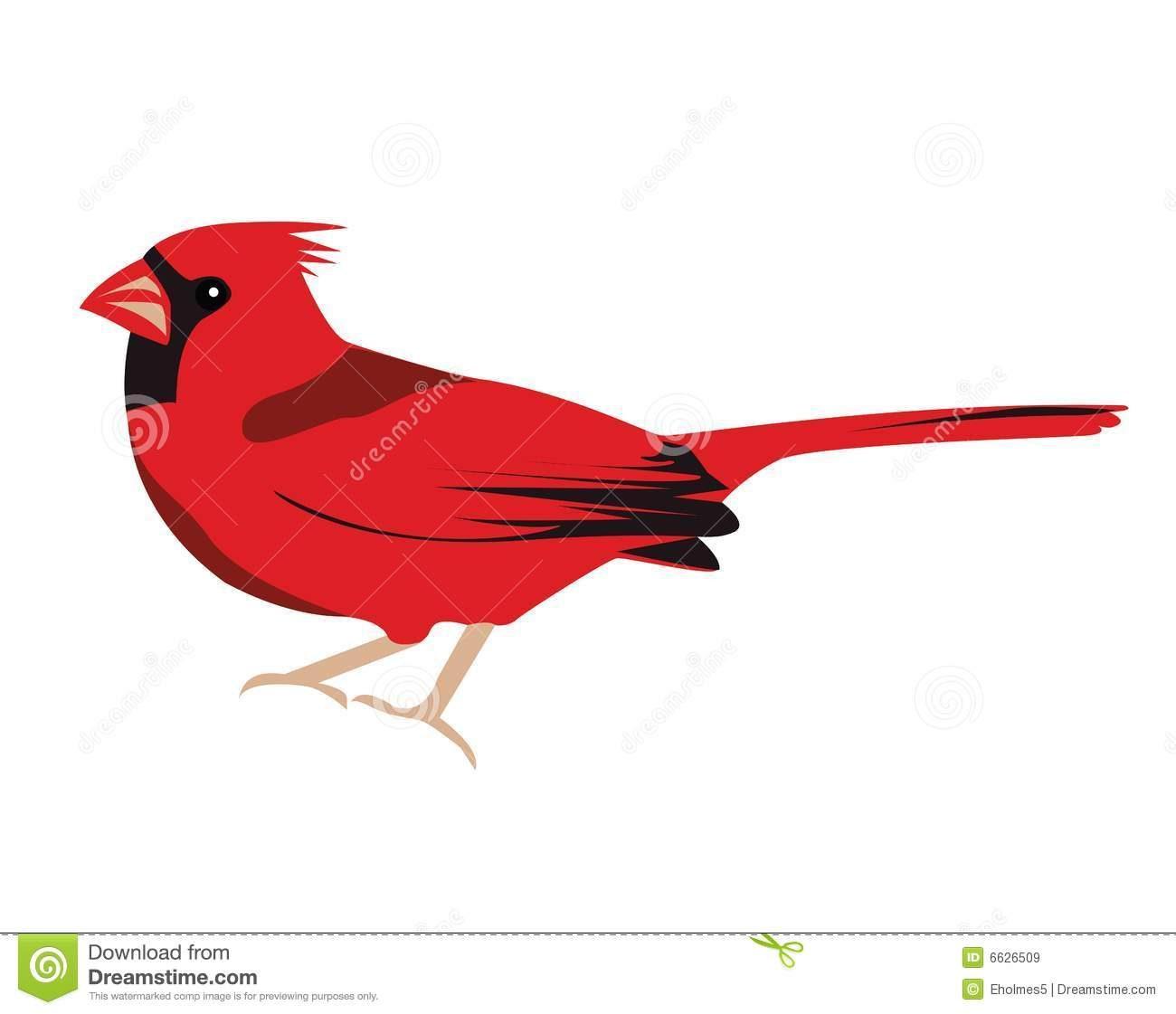 1300x1121 Cardinal Bird Clipart Collection