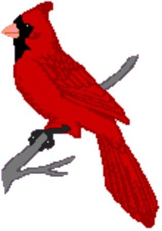 315x450 Cardinal Clipart Virginia