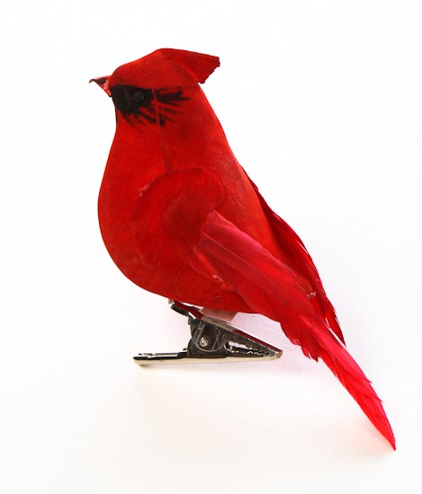 469x550 4 Red Feathered Cardinal Bird With Clip