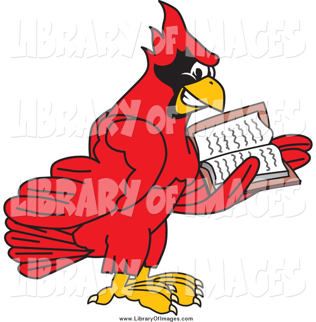 1024x1044 Clip Art Of A Red Cardinal Bird Reading By Toons4biz