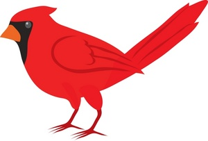 300x203 Red Cardinal Cartoon Clipart