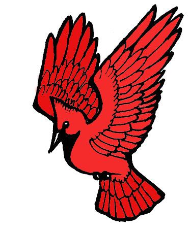 373x457 Cardinal Clipart Sketch