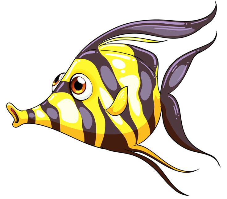 736x648 Butterflyfish Clipart Caricature