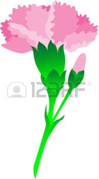 195x350 Mixed Carnation Bouquet Png Clip Art Instant By Weatheredmagnolia